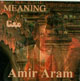 Amir Aram - Meaning - Mana (CD)
